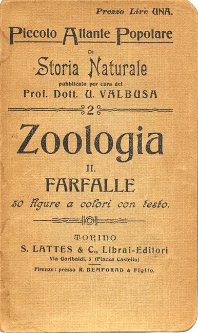 atlante-popolare-farfalle_valbusa_1907