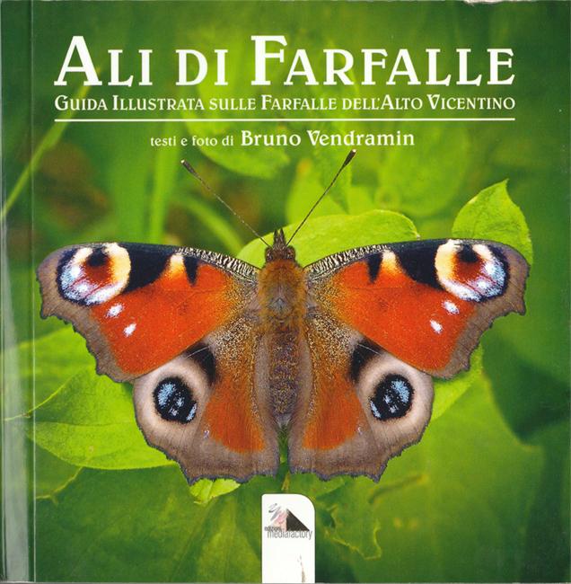 Ali di Farfalle