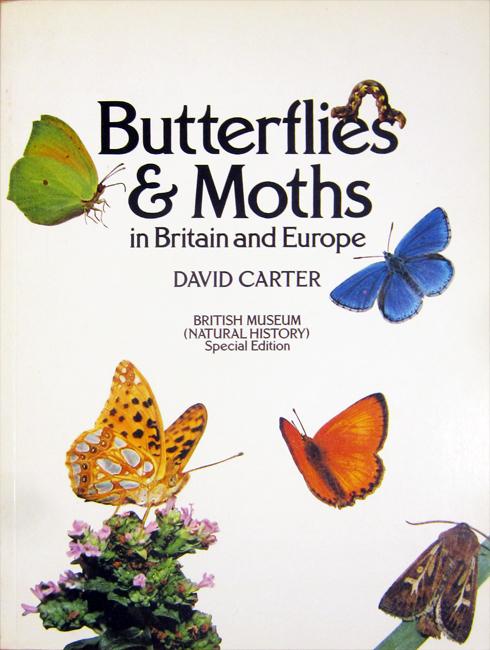 David Carter, Butterflies & Moths in Britain and Europe, British Museum (Natural History), Londra, 192 p., ISBN 0-565-00849-8, 1982. Una bellissima guida in grande formato che comprende più di 300 specie di farfalle e falene, illustrate in una efficace combinazione di foto a colori di individui in natura e esemplari preparati. La parte introduttiva introduce a molti aspetti che riguardano il mondo dei Lepidotteri, tra cui morfologia (occhi, antenne, apparato boccale, zampe, ali, etc.), ciclo vitale (dall'uovo alla crisalide), classificazione, comportamento, habitat, predatori e malattie, strategie di difesa, collezionismo, studio e conservazione.