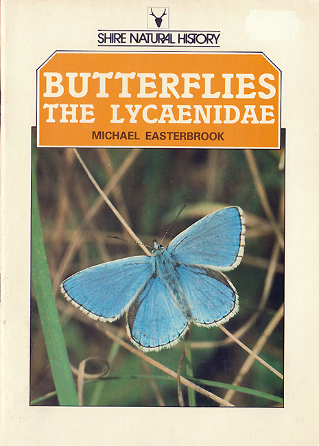 Butterflies. The Lycaenidae