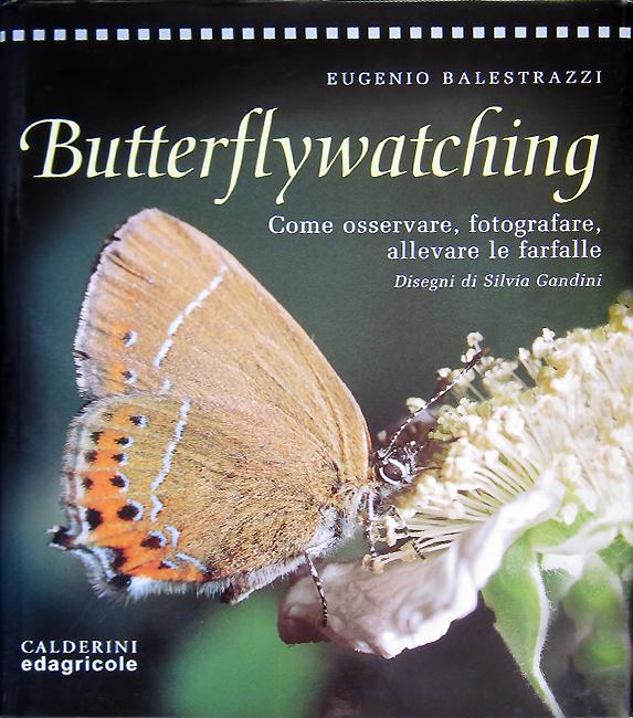 Eugenio Balestrazzi, Butterflywatching. Come osservare, fotografare, allevare le farfalle, Edagricole, Bologna, 276 p., ISBN 88-206-4321-9, 2000.