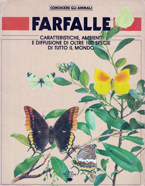 Farfalle (Conoscere gli animali)
