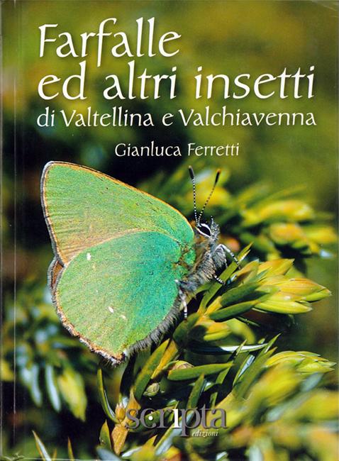 Farfalle ed altri insetti di Valtellina e Valchiavenna