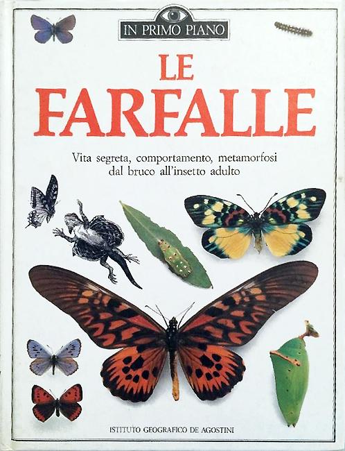 Dire che questo librò è bello, è un vero e proprio eufemismo. Si tratta di un vero capolavoro dal punto di vista divulgativo. Il formato delle pagine simile a fogli A4, riccamente accompagnate da foto e disegni, testi descrittivi e didascalie efficaci, fornisce una splendida visione di cosa è il mondo dei Lepidotteri. Non è tutta farina del sacco italiano, essendo una edizione italiana del libro Butterfly & Moths, la cui traduzione è stata curata da Simonetta Bertoncini