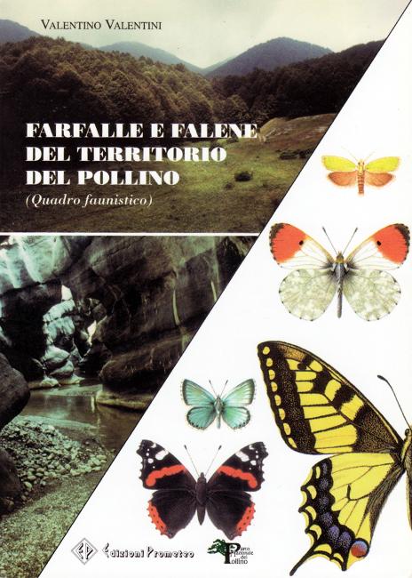 Breve lavoretto introduttivo sulla fauna di Lepidotteri presenti nel Parco del Pollino, sunto dell'esperienza di ricerca e studio pluridecennale da parte dell'autore. Sono figurate 21 specie ritenute di particolare interesse per la zona del Parco. Acquistato ad Entomodena nell'edizione di settembre 2016.