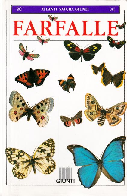 """Il linguaggio semplice e coinciso è il punto di forza di questa guida tascabile. Secondo l'ordine cronologico, questo dovrebbe essere il penultimo libro della serie """"Farfalle"""" di Ruffo; altre edizioni sono state pubblicate nel 1960, 1967, 1974 e 2004. Il comparto fotografico non rende giustizia al tutto, in quanto molte immagini risultano troppo piccole per poter apprezzare al meglio l'aspetto delle specie. Sono figurate poco più di 260 Lepidotteri tra farfalle e falene. Paradossalmente è più facile reperire l'edizione degli anni '60, piuttosto che quella del 1998, di cui sono riuscito a trovare una sola copia in vendita su Ebay."""