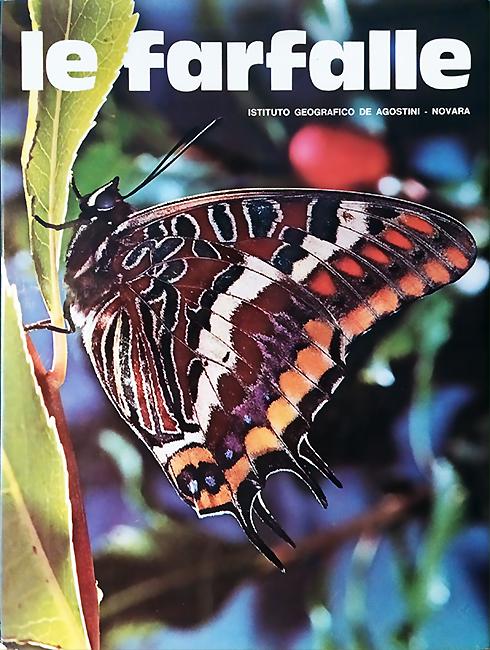 Le Farfalle. Meraviglie della Natura