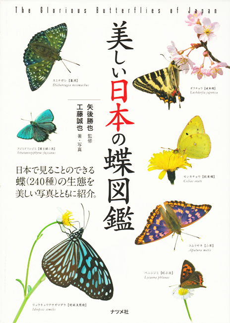 The Glorious Butterflies of Japan 2018.4 published 株式会社 ナツメ社 http://www.natsume.co.jp