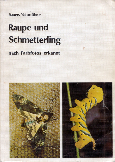 """Frieder Sauer, Raupe und Schmetterling: nach Farbfotos erkannt, Fauna-Verlag, Karlsfeld (DE), 209 p., ISBN 3-923010-00-1, 1982. Proprio come suggerisce il titolo, che possiamo tradurre come """"Riconoscere Bruchi e Farfalle attraverso le foto"""", questo libro ha come scopo primario quello di fornire dei validi spunti fotografici per riconoscere le specie. Ne sono descritte ben 64 di farfalle e 250 di falene, con foto sia del bruco che dell'adulto, rigorosamente a colori."""