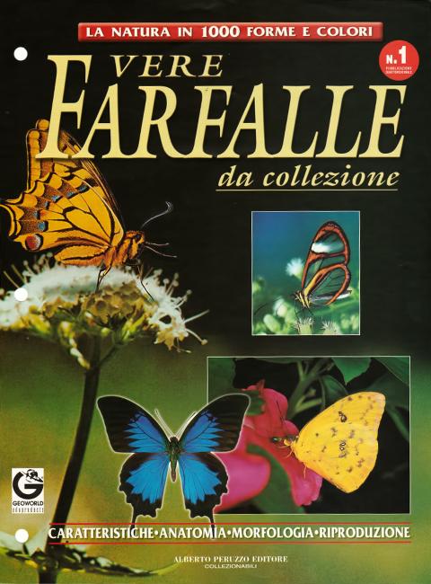 Paolo Rosa, La Natura in 1000 forme e colori. Vere Farfalle da collezione. Alberto Peruzzo Editore, Milano, ISBN 1972-3563, 2007.