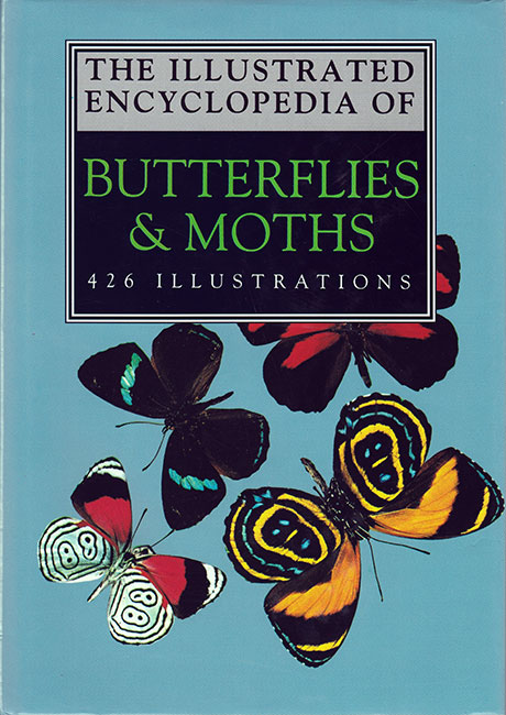 Encyclopedia of Butterflies and Moths