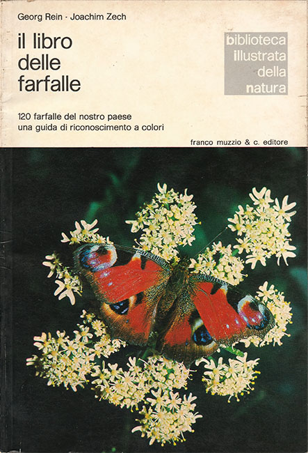 Il libro delle farfalle